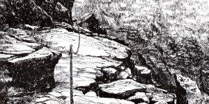 jak rysować piórkiem