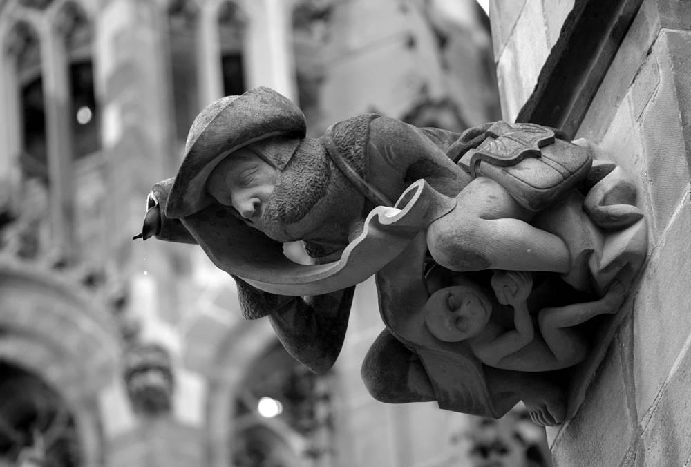 rzygacz gotycki