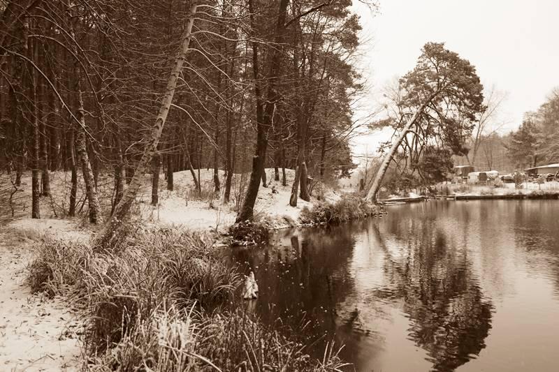 brzeg jeziora zimą
