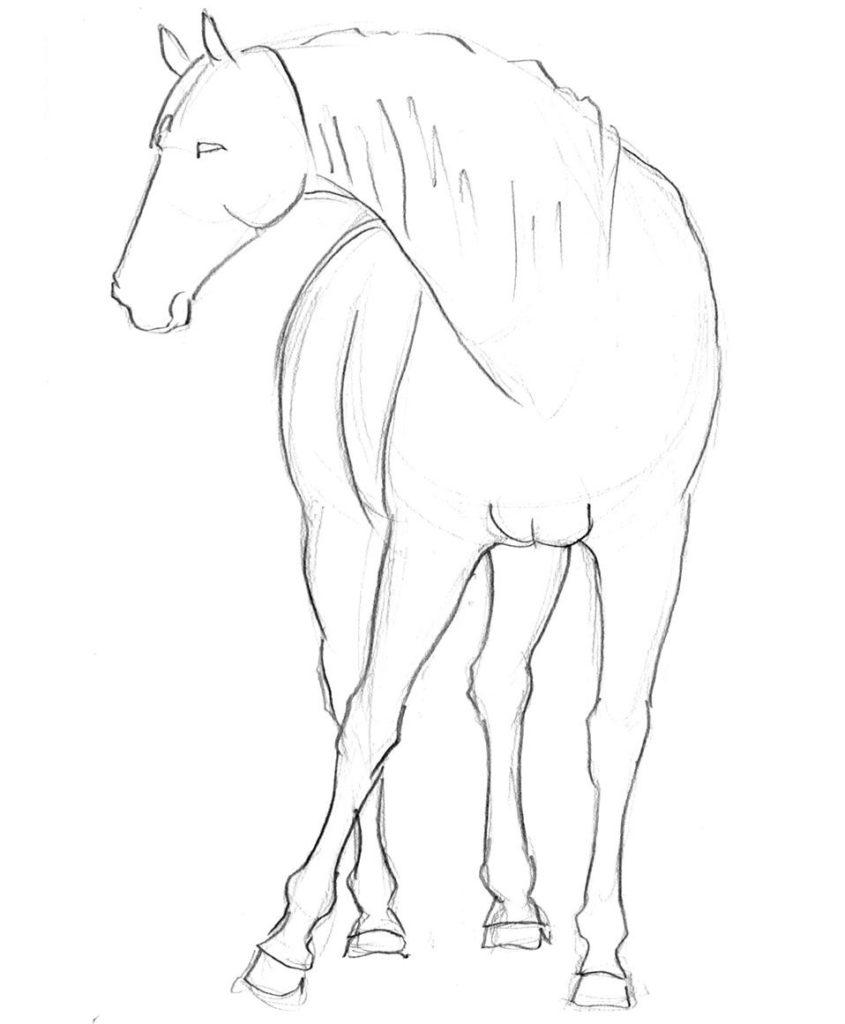 jak narysowac konia rysunek dla dzieci