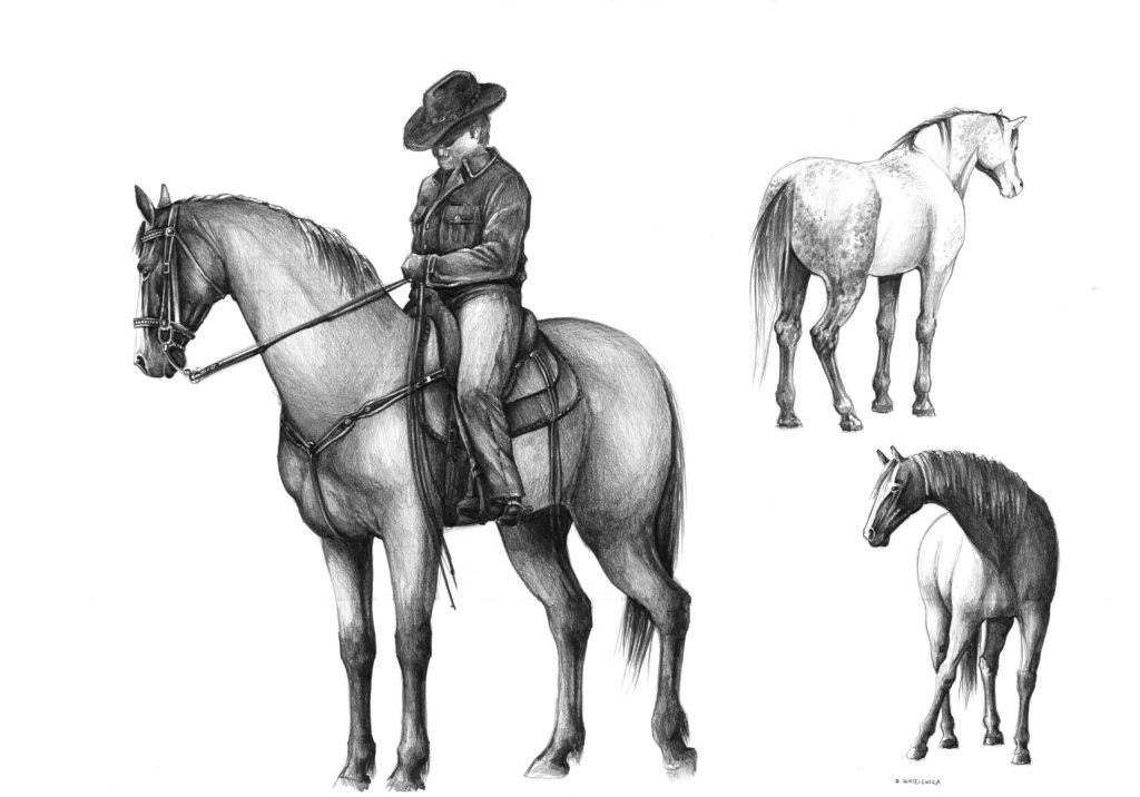 jak narysować konie