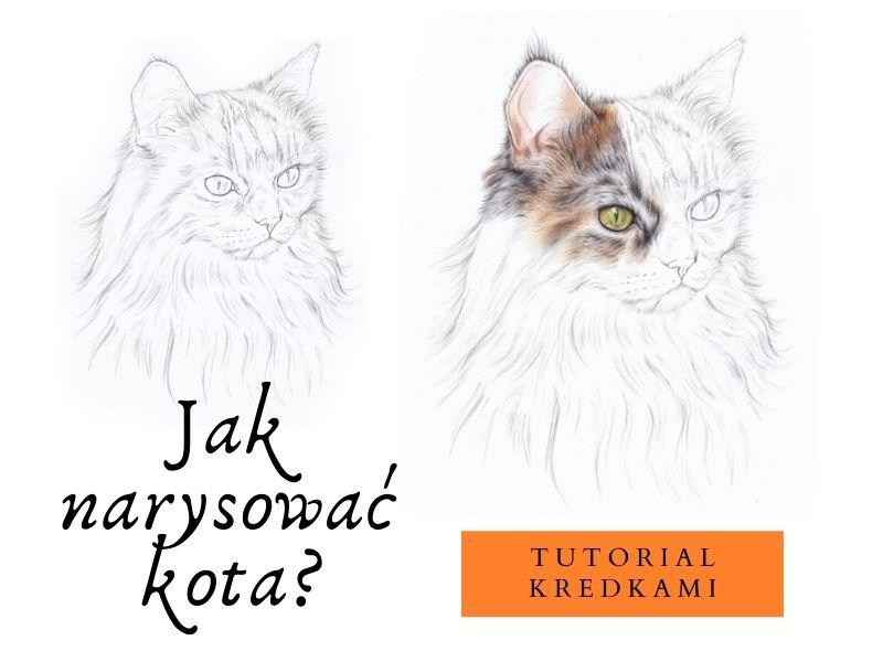 jak narysować kota kredkami